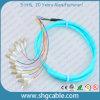 12 Core LC / Upc-50 / 125um Om3 mm Bunch Fibre optique Pigtail