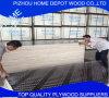 Mejor Precio de alta calidad WBP film se enfrentan a la madera contrachapada