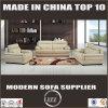 Il sofà moderno del salone ha impostato con le braccia del cuscino