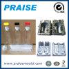 いろいろな種類プラスチック吹く型の製造のびん型ペット鋳造物