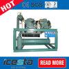Bitzer 2ces-3y resfriado a água de condensação na Sala de Armazenagem Fria