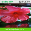 P6.67 Chipshow fabricante profesional de la publicidad Display LED de interior