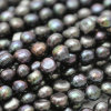 10-11mm Black Biwa Freshwater Pearl Strands Necklace、E190014