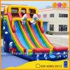 Inflatable gigante Slide per Water Park (AQ1145)