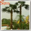 De altijdgroene Palm van Artificial van het Fiberglas voor Decoration