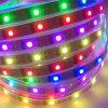 Un nastro magico flessibile di 2801 Digital LED di colore di sogno