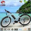 강력한 350W 전동기 자전거 뚱뚱한 타이어 자전거