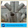 verbinding van het T-stuk van de Montage van de Pijp van het Roestvrij staal van 304 /316 de ZijY
