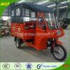 고품질 Chongqing 전송자 3 바퀴 기관자전차