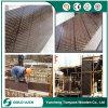 Пленка высокого качества строительного материала смотрела на переклейку для конструкции