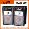PA-Lautsprecher grosse Leistung-aktiver Laufkatze DJ-Ststem (Y-8015)