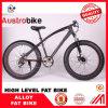 Горячий продавая Bike 26inch стального цвета рамки углерода сплава алюминиевого белого черного тучный дешево дешево для рынка европейца Ce сбывания