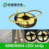 C.C. 12V/24V Cost-Effective da luz de tira 60LEDs/M do diodo emissor de luz SMD5054 da alta qualidade