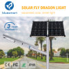 80W complet/a intégré le jardin solaire des produits DEL allumant le réverbère extérieur de nuit de détecteur