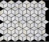Il mosaico madreperlaceo del cubo ha montato sulla maglia