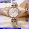 Relógio de pulso da fábrica das senhoras de quartzo da cinta de couro da forma (Wy-100A)