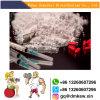 Поставщики Китая мышцы здания порошка стероидов Testostereone Decanoate анаболитного стероида