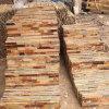 الصين طبيعيّ صفراء صدئة أردواز [ولّ بنل] ([سمك-سكب368])