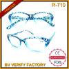 Diseñado R-710 Transparente Especial Plastic Frames gafas de lectura Merchandising en China