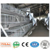Système neuf de matériel de cages de poussins de ferme avicole (un type bâti)