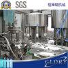 Flüssige Wasser-Plastikflaschen-füllender abfüllender Verpackungsmaschine-Produktionszweig