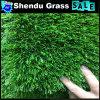 훈장을%s 녹색을%s 가진 30mm 정원 잔디 양탄자