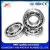 De aço inoxidável de alta qualidade do rolamento de esferas de entrada profunda S6300zz S6302 6304 6305
