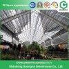 Serre chaude de plastique de Multi-Envergure d'agriculture de la Chine
