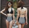 Sexy Bikini, Desgaste de natação, Desgaste do biquini de cintura elevada (AZAB-13081)