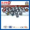 자동 Bearing Wheel Hub Bearing Dac38710039 Zz/Dac38720434/Dac38720236/33 2RS
