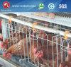 Venta caliente un tipo precio de la jaula de la capa de la batería con el sistema automático de la jaula del pollo (A3L90)