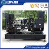 Générateur triphasé de diesel de Lovol 22kw 28kVA de vente chaude