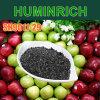 Humusachtige Zuur en Fulvic Zure Bais van het Kalium van de Meststoffen van het Beheer van de Automatisering van Huminrich het Oplosbare