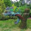 Het openlucht Mooie Kameleon van het Beeldhouwwerk van het Gras