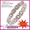 De magnetische Armband van het Titanium