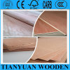 madera contrachapada del anuncio publicitario de los muebles de 3.6mm*1220*2440m m Bintangor