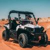 2 Pessoas veículo utilitário desportivo eléctrico com cama de Carga
