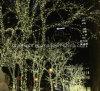 Les quirlandes électriques blanches chaudes pour Noël célèbre lance des décorations sur le marché à la ville hôtel