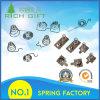 Kundenspezifisches verschiedenes Geräten-Fernsteuerungsbatterie-Schraubenfeder, Ladegerät-Sprung