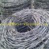 塀のための熱浸された電流を通されたかみそりの有刺鉄線か有刺鉄線