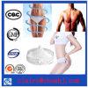 L-Carnitina CAS 541-15-1 de los esteroides de la pérdida de peso para tratar obesidad sin efecto secundario