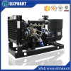 générateur de diesel de pouvoir de Yangdong de garantie de 20kw 25kVA 18month
