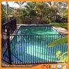 증명된 검정 또는 앵초 수영장 담 편평 정점. 유리 또는 정원 검술