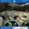 0.3mm Thickness 1200mmwidth Steel Coil da vendere
