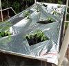 Mulch reflexivo Film para Vegetables y Fruits