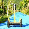 O CE aprovou o trotinette do balanço elétrico de duas rodas com preço de fábrica
