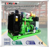 gás natural 50 hertz 400 V Genset de gerador de potência 50kw