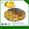 Linha da trasformação de frutos para o suco da laranja/abacaxi/citrino/fruta do dragão que faz a máquina Cetrificated