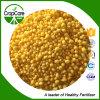 Água agricultural da classe - fertilizante composto solúvel 24-14-10 do fertilizante NPK