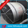 Manufacturer professionale di Multi-Ply PE Fabric Rubber Conveyor Belt